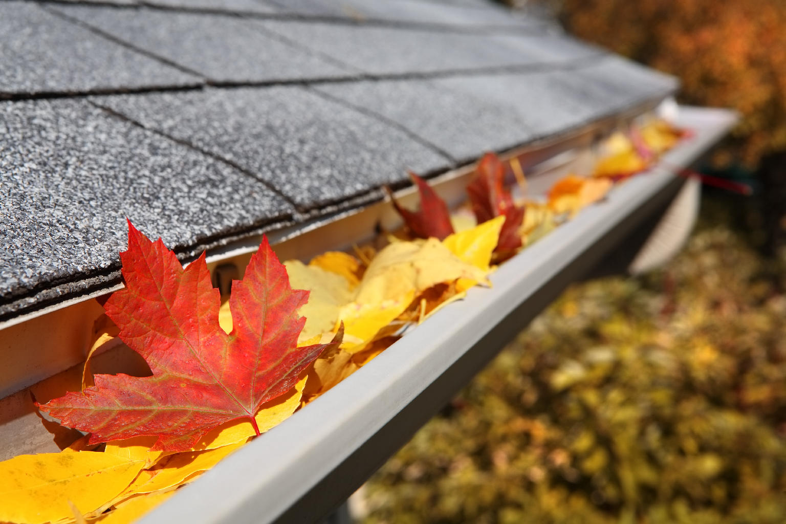 Gutter Maintenance Services in Sutton Coldfield, Great Barr and Birmingham